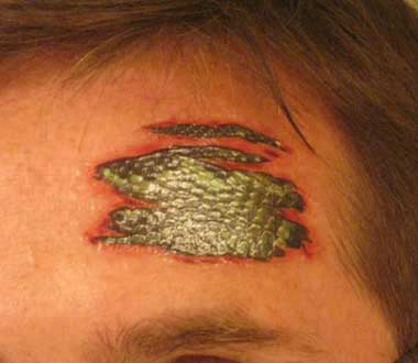 Costume Tattoos - Reptile Skin Underneath Yours - V TV Series - Easy